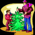 Find local Christmas tree farms here!